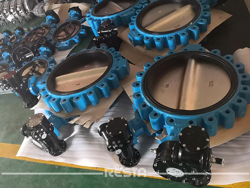 Lug Concentic Butterfly Valve